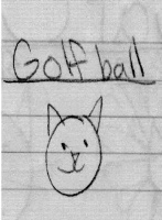 goft ball cat