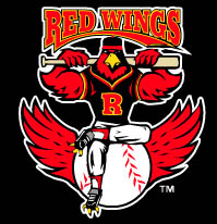 the Redwings team