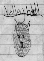 valley ball cat